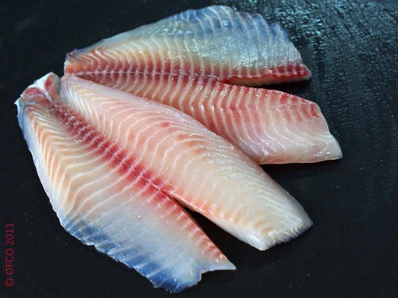 Tilapia fillet Shallow Skinless Red Meat On