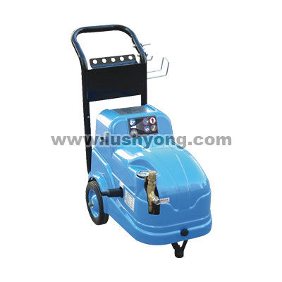 LS-2010 high pressure cleaner