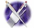 Laboratory Pipettes
