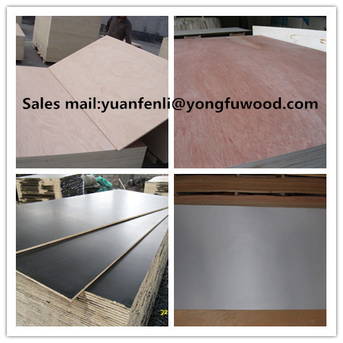 plywood cheap plywood for sale by linyi city lanshan