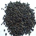 Black Pepper / Black Pepper supplier